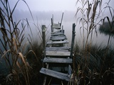 Weathered Dock in Fog Photographic Print by Richard Bickel