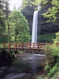 Silver Falls State Park - Oregon Photographic Print by Craig Tuttle