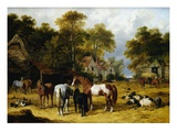 Horses, Cattle, Pigs and Chickens in a Farmyard Giclee Print by John Frederick Herring