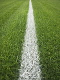 Painted Line on Athletic Field Fotografisk tryk af Randy Faris