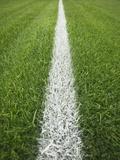 Painted Line on Athletic Field Fotografie-Druck von Randy Faris
