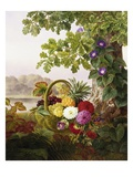 Dahlias, Asters, and Morning Glory Reproduction procédé giclée par Johan Laurentz Jensen
