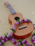 Ukelele and garland, elevated view Photographie