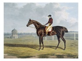 Aquatint by Thomas Sutherland After St. Patrick, Winner 1820 Giclee Print by John Frederick Herring I