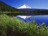 Craig Tuttle - Lakeside Grass and Mt. Hood Fotografická reprodukce