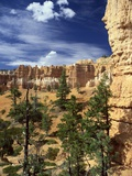 Hoodoos and Ponderosa Pines Photographic Print by James Sparshatt