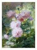 Poppies Giclee Print by Achille Theodore Cesbron