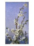 Blossom Giclee Print by Sophie Anderson