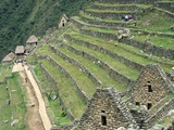 Terraced Fields at Machu Picchu Photographic Print by Dave G. Houser