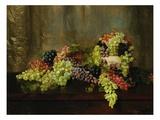 Grapes Giclee Print by Alberta Binford McCloskey