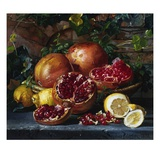 A Still Life of Pomegranates and Lemons Giclee Print by Magnus Otto Sophus Petersen