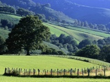 Pays Basques Countryside Photographic Print by Owen Franken