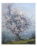 Spring Giclee Print by Emanuel Phillips Fox