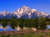 Grand Teton Photographic Print by Robert Glusic