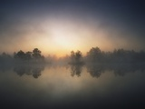 Morning Mist and Sunrise along Wetlands Fotografisk tryk af Hans Strand