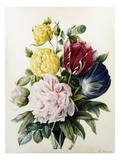 Tulips and Roses Premium Giclee Print by Louise Thuillier Mornard