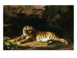 Portrait of the Royal Tiger Giclee Print by George Stubbs