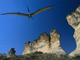 Pteranodon Longiceps Model in Flight Photographic Print by Jonathan Blair