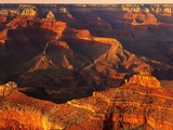 Grand Canyon Bathed in Sunlight Photographic Print by Shubroto Chattopadhyay