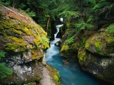 Avalanche Creek Photographic Print by James Randklev
