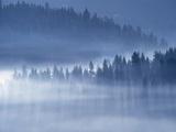 Mist Hiding Trees Above the Little Spokane River Valley Photographic Print by Bob Rowan