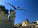 Pteranodon Longiceps in Flight Fotografie-Druck von Jonathan Blair