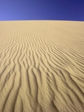 Windblown Sand Dune Photographic Print by Tom Grill