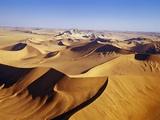 Sand Dunes of Namib-Naukluft Park Fotografisk tryk af Michele Westmorland