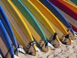 Rangée de planches de surf sur la plage Photographie par Randy Faris
