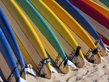 Row of Surfboards at Beach Fotografisk tryk af Randy Faris