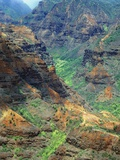 Waimea Canyon Photographic Print by James Randklev