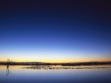 Sunset over Snow Geese on Water Photographic Print by Arthur Morris
