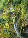 Waterfall on Moss-Covered Cliff Photographic Print by Theo Allofs