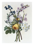 Bouquet of Rose, Narcissus and Hyacinth Giclee Print by Jean Louis Prevost
