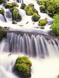 Mossy Rocks in Rushing Stream Photographic Print by Craig Tuttle