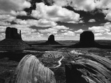 Desert Mesas Photographic Print by Brett Weston