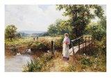 Gathering Poppies Near Winchester, England Premium Giclee Print by Ernest Walbourn