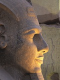 Illuminated Ramses II Head Photographic Print by Mike McQueen