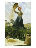 Winnowing the Grain Giclee Print by Hans Brasen