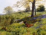 Near Dorking, Surrey, England Giclee Print by Charles Collins II