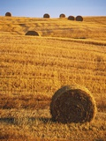 Harvested Fields of Hay Photographic Print by Jim Craigmyle