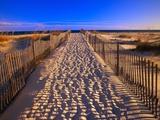 Spuren im Sand auf Santa Rosa Island Fotografie-Druck von Joseph Sohm
