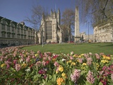 Gardens on East Side of Bath Abbey Photographic Print by Jonathan Hicks