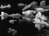Floating Ice Photographic Print by Brett Weston