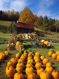 Pumpkins at Produce Stand Photographic Print by David R. Frazier