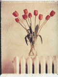 Vase of Tulips on a Radiator Photographic Print by Natalie Fobes