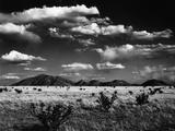 Desert Landscape, 1969 Reprodukcja zdjęcia autor Brett Weston