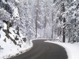 Winter Road in Yosemite National Park Photographic Print by Darrell Gulin