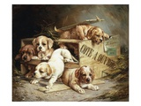 Tumbling Retriever Puppies Giclee Print by Frederico Olaria