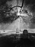 Cemetery at Night Photographic Print by Brian Cencula